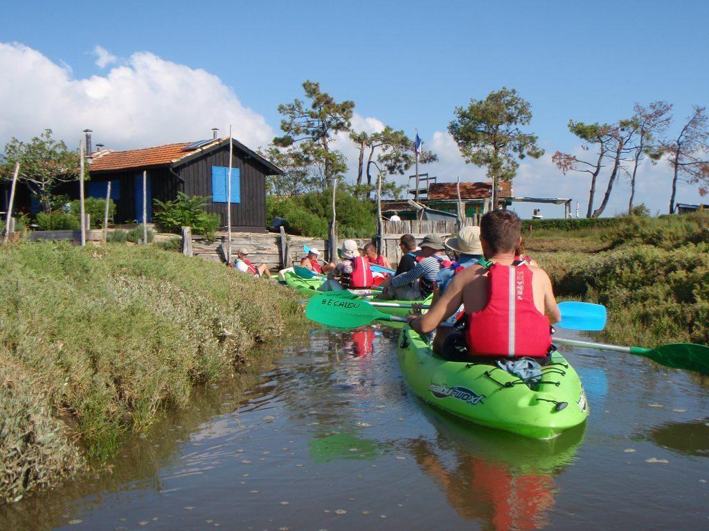 Kayak sur l'ïle aux oiseaux Becalou